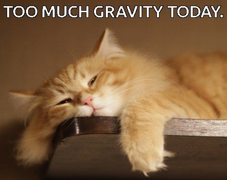 with barely 20 hours of sleep, that gravity can be over bearing