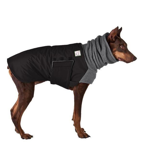 Doberman Pinscher Dog Winter Coat (Black Coat with Grey Hood)