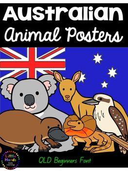 Australian Animal Posters - QLD Beginners FontProduct Description:This poster pack includes 13 (thirteen) A4 page size Australian Animal posters. The Australian Animals in this set are Koala, Kangaroo, Emu, Wombat, Kookaburra, Echidna, Dingo, Platypus,  Tasmanian Devil, Bandicoot,  Quokka , Frilled Neck Lizard and Sea Turtle.