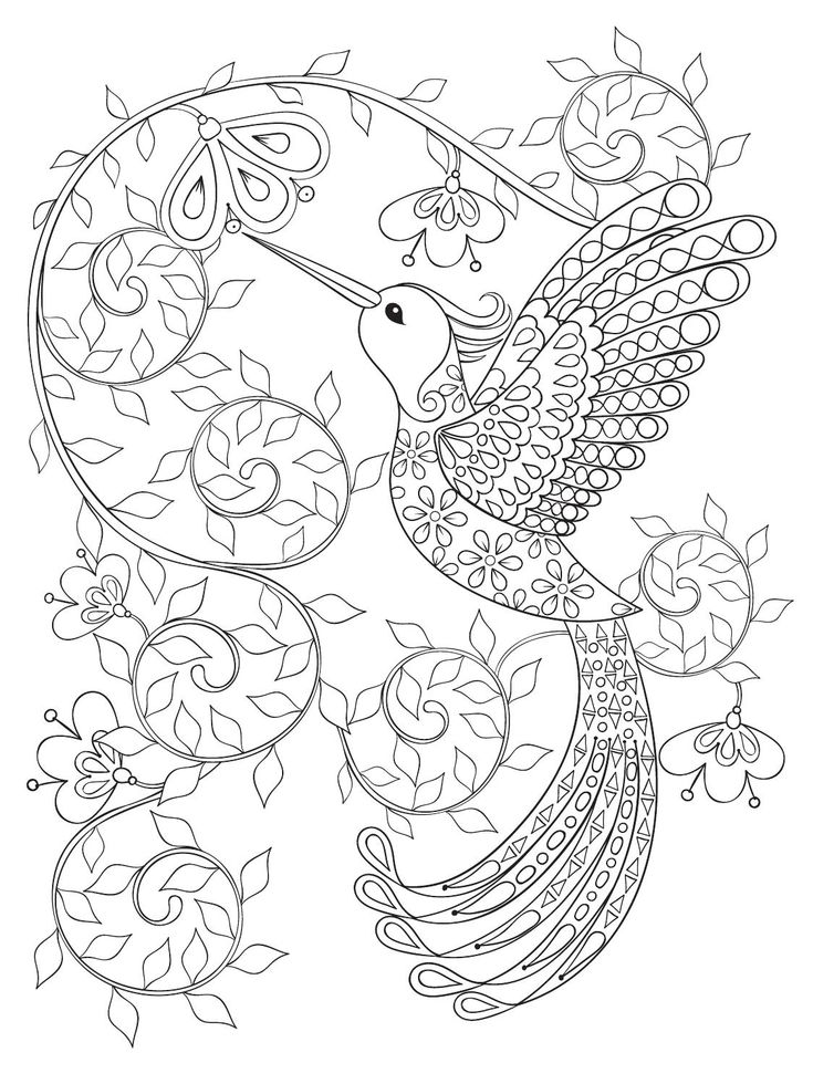 1862 best Coloring Pages images on Pinterest | Coloring books ...