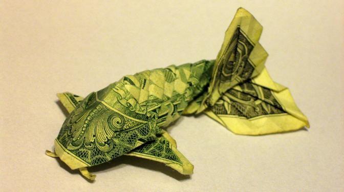 carpa em 1 dollar