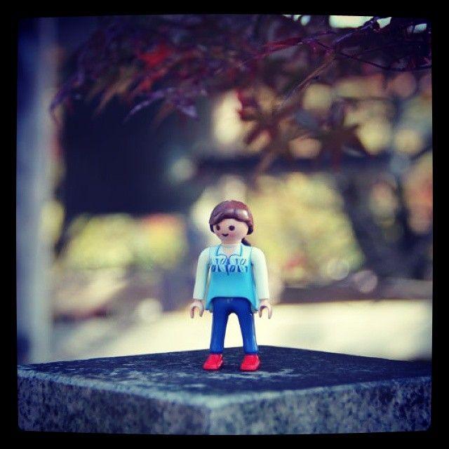 紅葉の寂光院 #寂光院#犬山#playmobil #playmobilfigures #playmobilove #プレイモービル#autumn #autumn color
