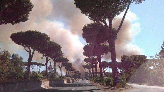 Le fiamme sarebbero divampate all'Infernetto, a ridosso di via Martin Pescatore e, poco dopo, in via del Circuito. Fermato dai carabinieri un uomo per