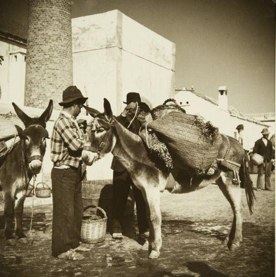 """Artur Pastor - Série exposição """"Motivos do Sul. Algarve, 1943/45"""