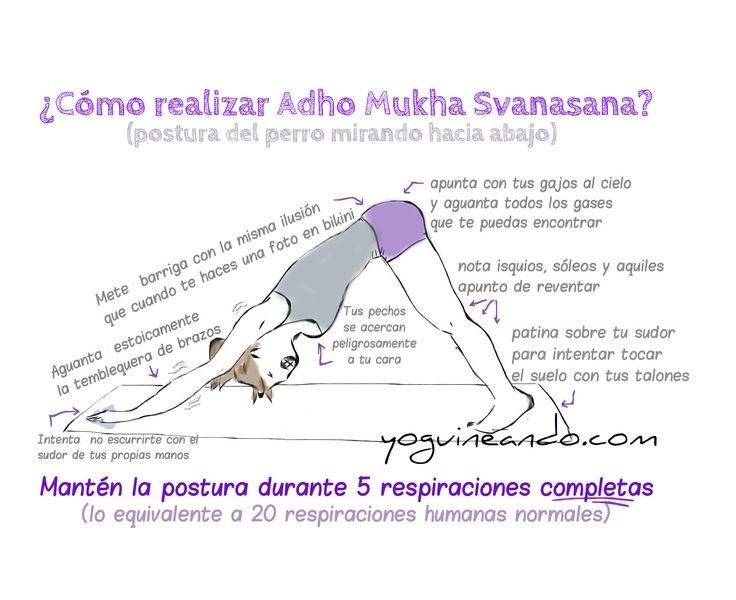 humor yoga en español, perro mirando hacia abajo,