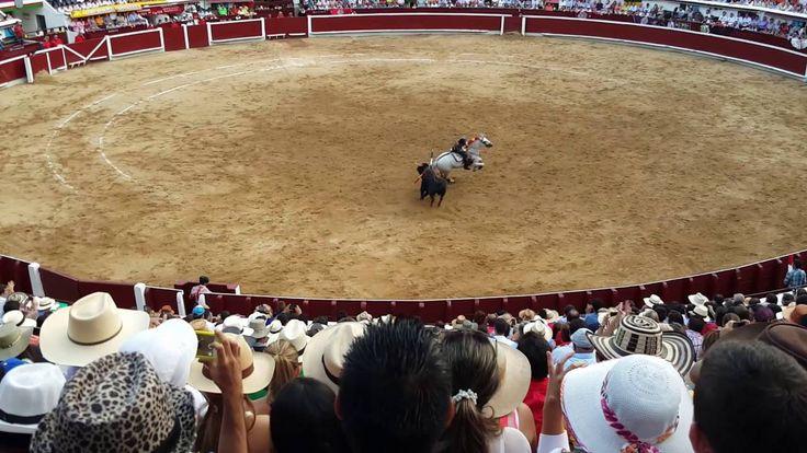 EL MEJOR REJONEADOR DIEGO VENTURA REJONEO DE TOROS EN LA JORNADA TAURINA...