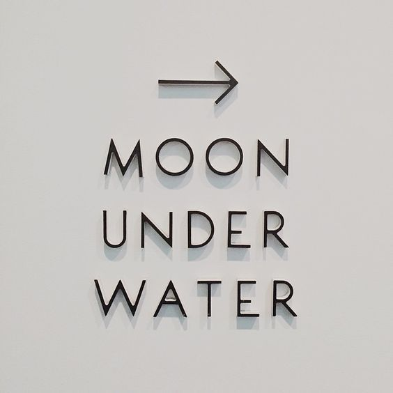 moon under water essay by george orwell The author george orwell wrote an article in the london evening standard about his favourite fictional pub which he called the moon under water.