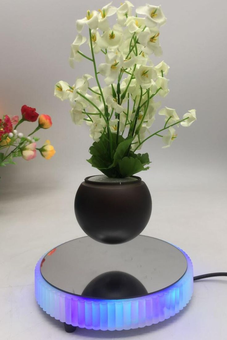 24 Best Customize Led Light Magnetic Floating Levitate Bottom Air  # Faire Support Aquarium Beton Cellulaire