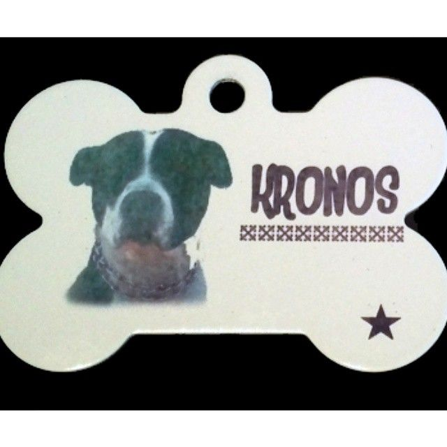 Placa con la foto a color de la mascota, en aluminio de alta resistencia.  #PlacasParaMascotas #Hueso #Mascotas #Foto #Perros #Cachorros #Color #Identificacion