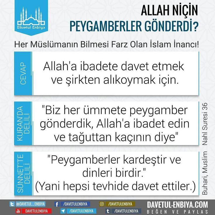 #peygamber #neden #davet #kuran #hadis #buhari #dinimizislam #hadis #ayet #allah #müslüman #ümmet #ilim #cennet #sözler #mümin #huzur #din #iman #namaz #dua #sure #kuranıkerim #secde #sevgi #duaet #ayetler #hadisler #muhammed