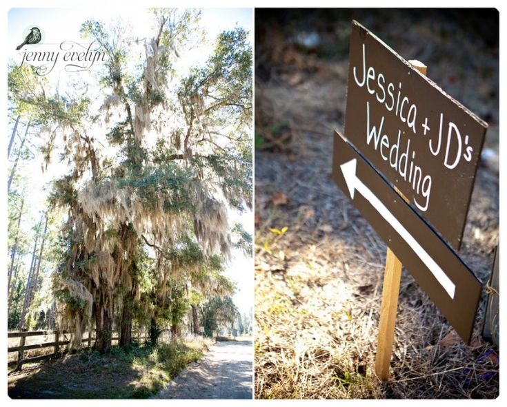 Chalkboard signs directing guests. Spanish Moss everywhere :)