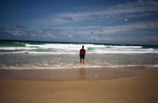 Travel With MWT The Wolf: Most Beautiful Pictures of Mwt Sunshine Coast Aust...