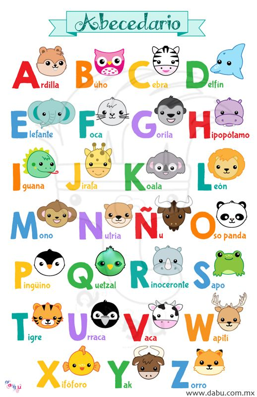 Abecedario en español con animalitos // Spanish alphabet with animals