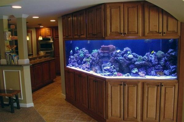 how to build a big aquarium