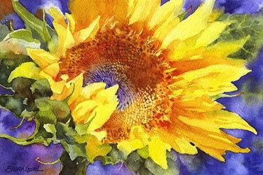 """Sun Seeker"": Susan Crouch, NC watercolor"