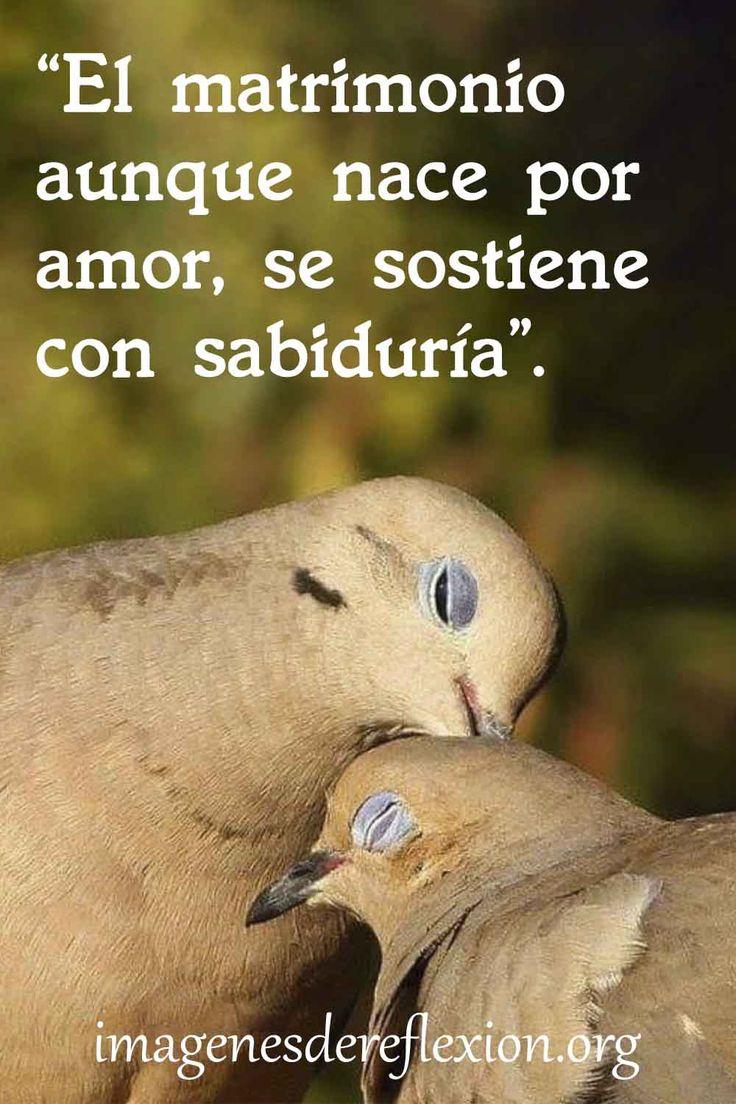 El matrimonio aunque nace por amor, se sostiene con sabiduría. Pretty, Words Quotes, Powerful Quotes, Pretty Quotes, Sentimental Quotes, Thoughts, Real Love