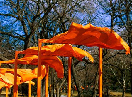 the gates: Color, Gates Christo, Central Parks, Contemporary Art, Jeans Claude, Jeanne Claude Saffron, Christo Gates, Christo Jeanne Claude, Gates 2005