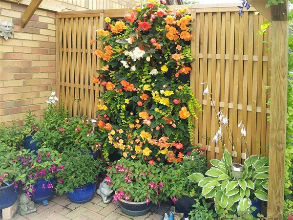 76 best images about garden shelters pergolas on for Vertical garden panels