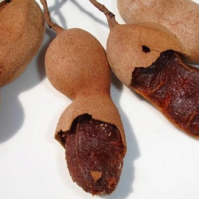 tamarindo fruit tomato is a fruit