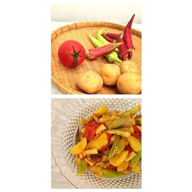 無農薬の野菜です☆  ナンプラー、オイスターソース、カレー粉で味付け☆ - 17件のもぐもぐ - オクラ、トマト、新ジャガのエスニック炒め☆ by haco85