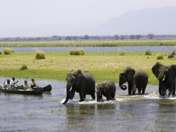 #Zimbabwe, #Africa