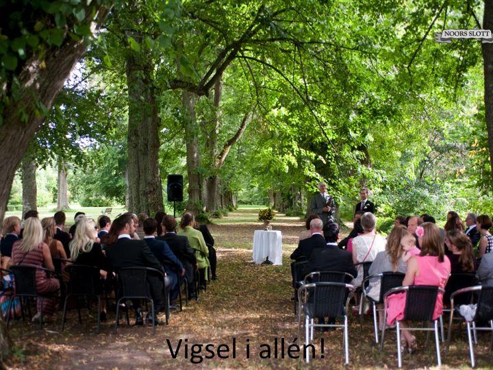 vigsel, sommar, bröllop, allé