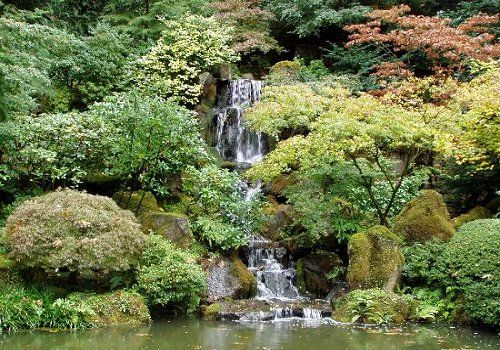 De japanske Haver - En fantastisk oplevelse midt i det fynske bakkelandskab.