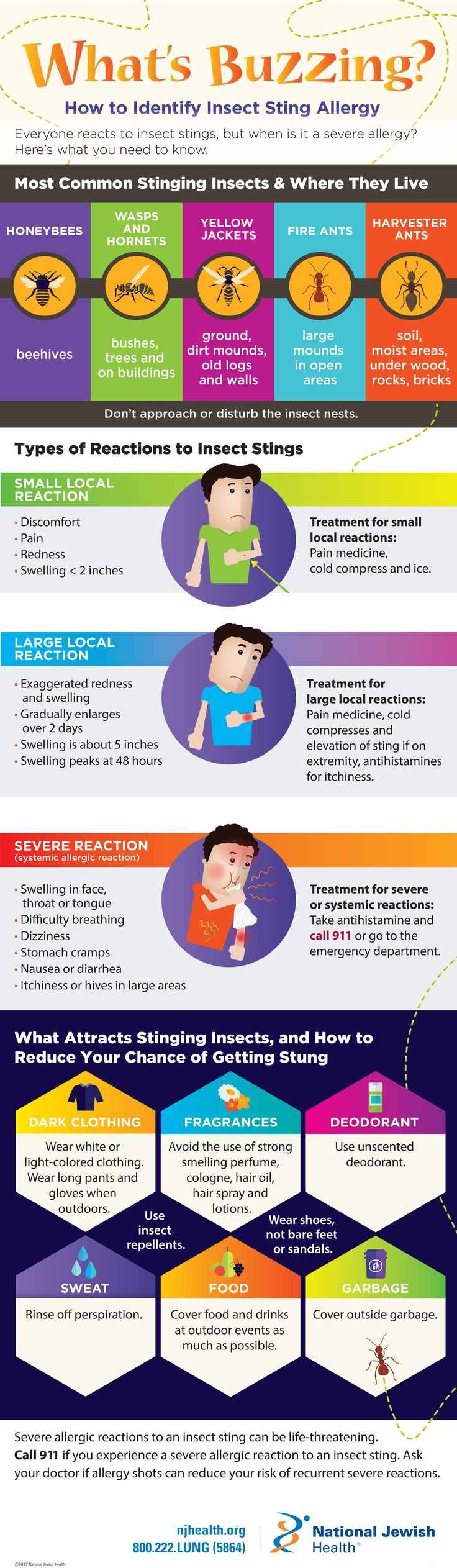 Did you know that about 10 percent of us are allergic to insect venom and are at risk for having a severe reaction? Learn which stinging insects to avoid, the symptoms of a severe allergy and how to treat reactions. #infographic