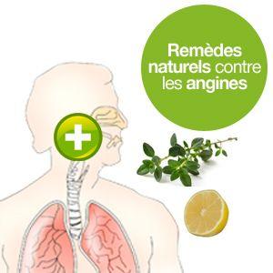 Des remèdes naturels contre les angines : le thym thujanola en aromathérapie, le citron et le repos.