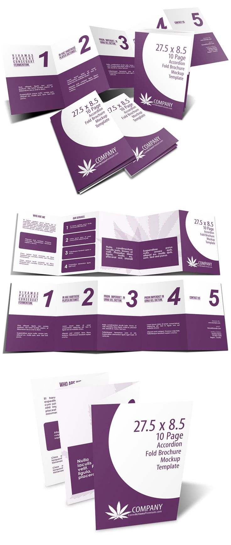 5 Panel 5.5 x 8.5 Accordion Fold Brochure Mockup