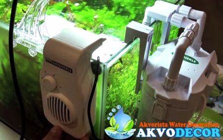 Grosir Perlengkapan Aquarium Air Laut Di Tangerang