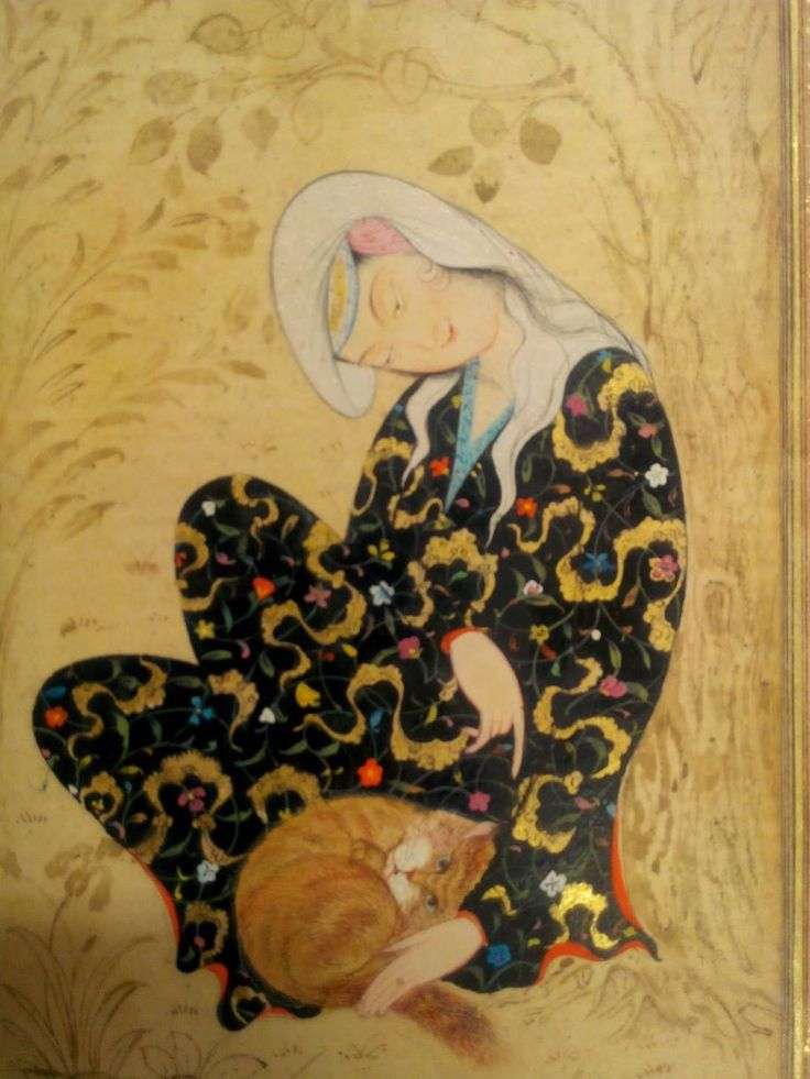 cat and girl, Jahongir Ashurov