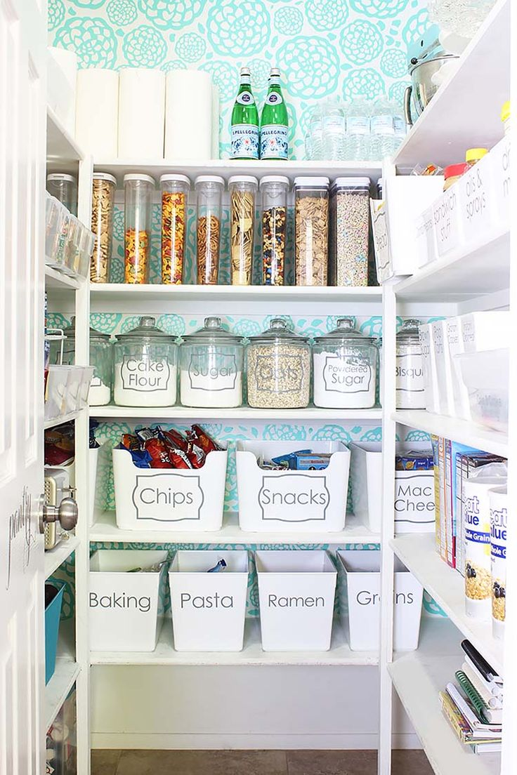 Wide-open pantry with clean and bright shelving and well-labeled compartments.