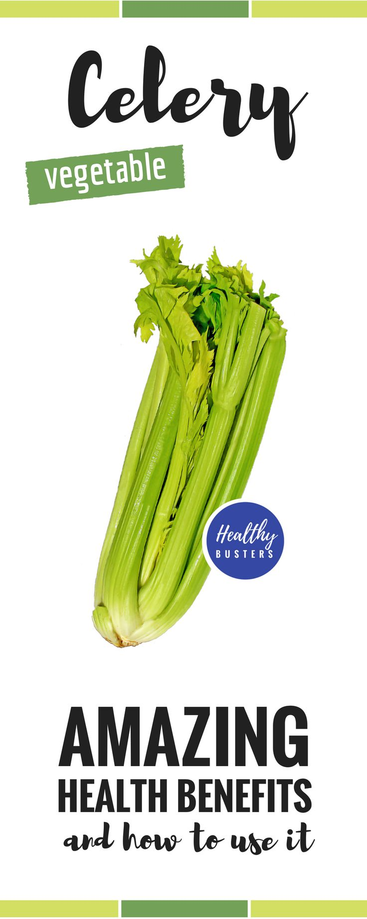 Celery – Amazing health benefits and how to use it. Celery is a good source of minerals, such as potassium, sodium, calcium, manganese and magnesium. #celery #healthbenefits #minerals #sodium #calcium #magnesium #manganese #potassium #vitamins #herb #eathealthy #healthyfood
