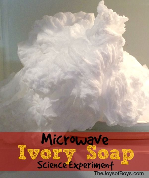 Ivory Soap Experiment - Only Soap and Microwave Needed - The Joys of Boys