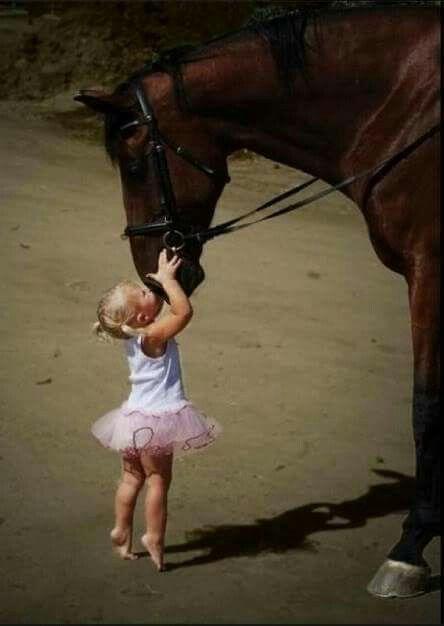 CUTE BABY A PRECIOUS HORSE