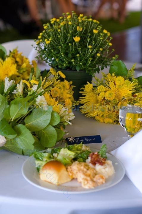 Pictures Of Potted Centerpieces 10