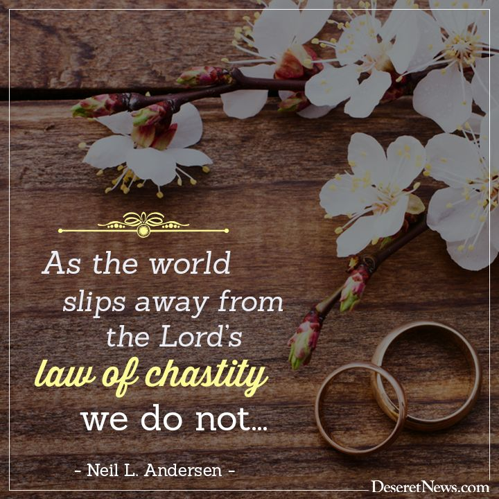 Image result for Live the law of chastity.