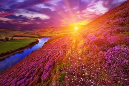 Λήψη - Όμορφο τοπίο της Σκωτίας φύσης — Εικόνες αρχείου #53954927