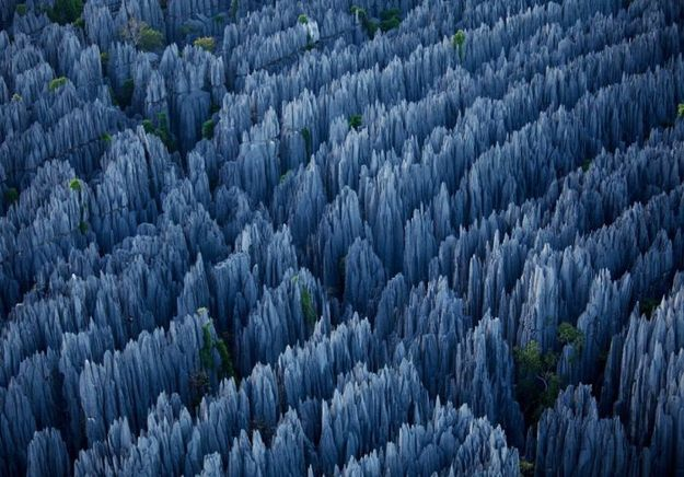 The Stone Forest of Yunnan, China.  Formed from the dissolution of limestone, the linear trends of dissolution likely following sets of fracture/jointing in the limestone.  .