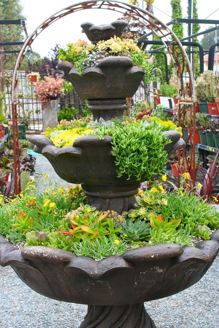 Talavera ceramic birdbaths eclectic bird baths phoenix by - Spectacular Examples Of Succulent Bird Baths And Fountain Plantings From The Cordova Gardens Posted By The