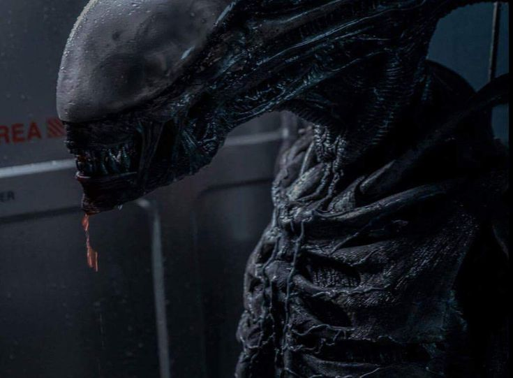 Ridley Scott wants to 'replace' the Xenomorph in Alien: Covenant 2 - Alien: Covenant Movie News
