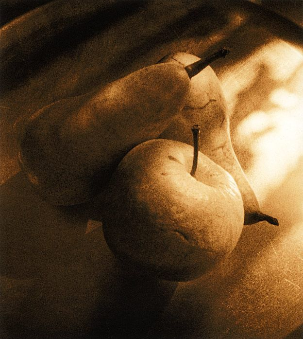 Apple and Pears pinhole (zero image 4x5) lith version on PW15 It is not a typical Polywarmtone lithprint. What I wanted to achieve was: a reddish hue, a little more grain as usual with this paper and pronounced deep shadows with a clear separation to the neighbouring zones. All in all not easy with such a high contrast negative. It needs a lot of overexposure for the highlights – bad for the shades. That is why I played with a 3-bath development.