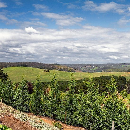 Valley Views, Bridgetown, Western Australia