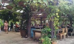 Картинки по запросу the potting shed at the the grounds