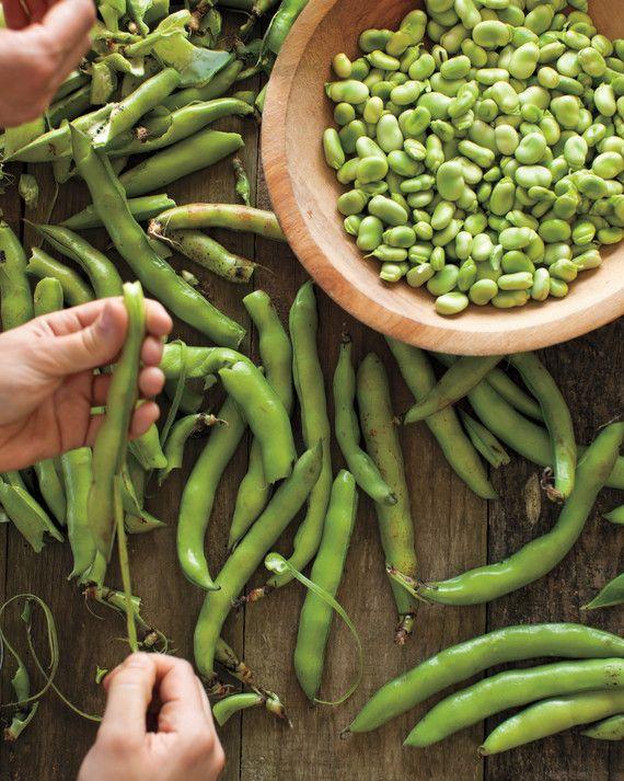 50++ Fava beans near me ideas in 2021