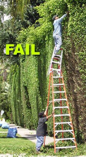 ladder fail...: Darwin Awards, Women Live, Safety, Ladders, Funny Stuff, Funnies, Humor, Photo