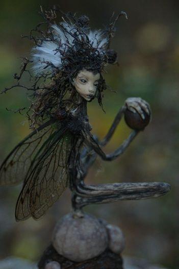Root fairy