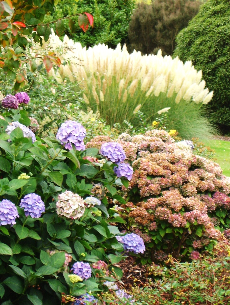 Les 315 meilleures images du tableau garden sur pinterest for Idees plantations exterieures