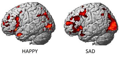 happy and sad brain activity